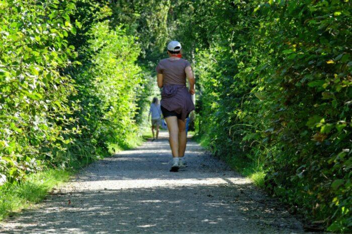 la nature, en marchant, la personne, Piste, sport, courir, des loisirs, vert, parc, le jogging, joggeur, loisir, des sports, un moyen, Soyez bénis, aller, récupération, faire du jogging, loisirs de plein air