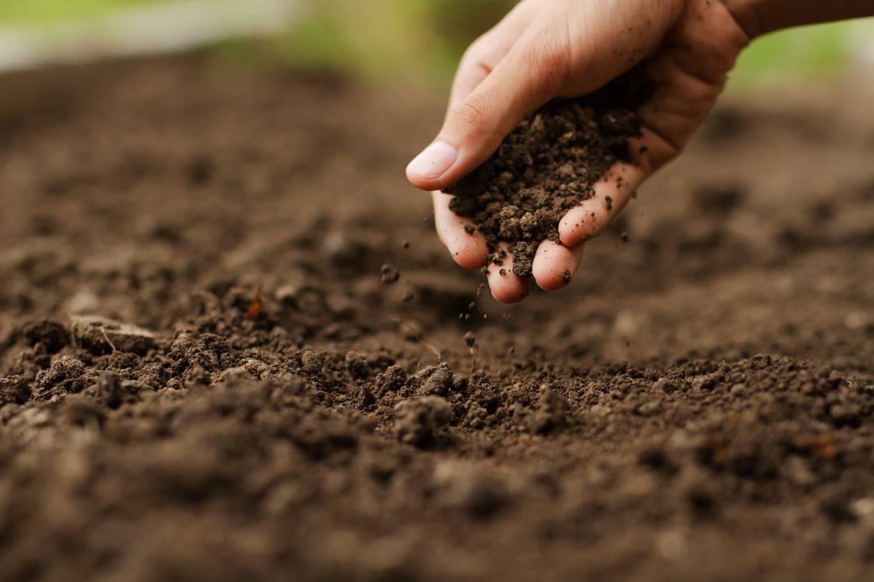 étude de sol